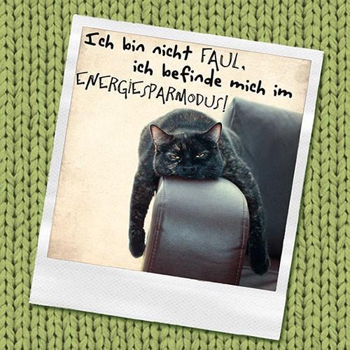 "20 Servietten, 3-lagig ""Design Edition"" 1/4-Falz 33 cm x 33 cm ""Ich bin nicht faul…"""